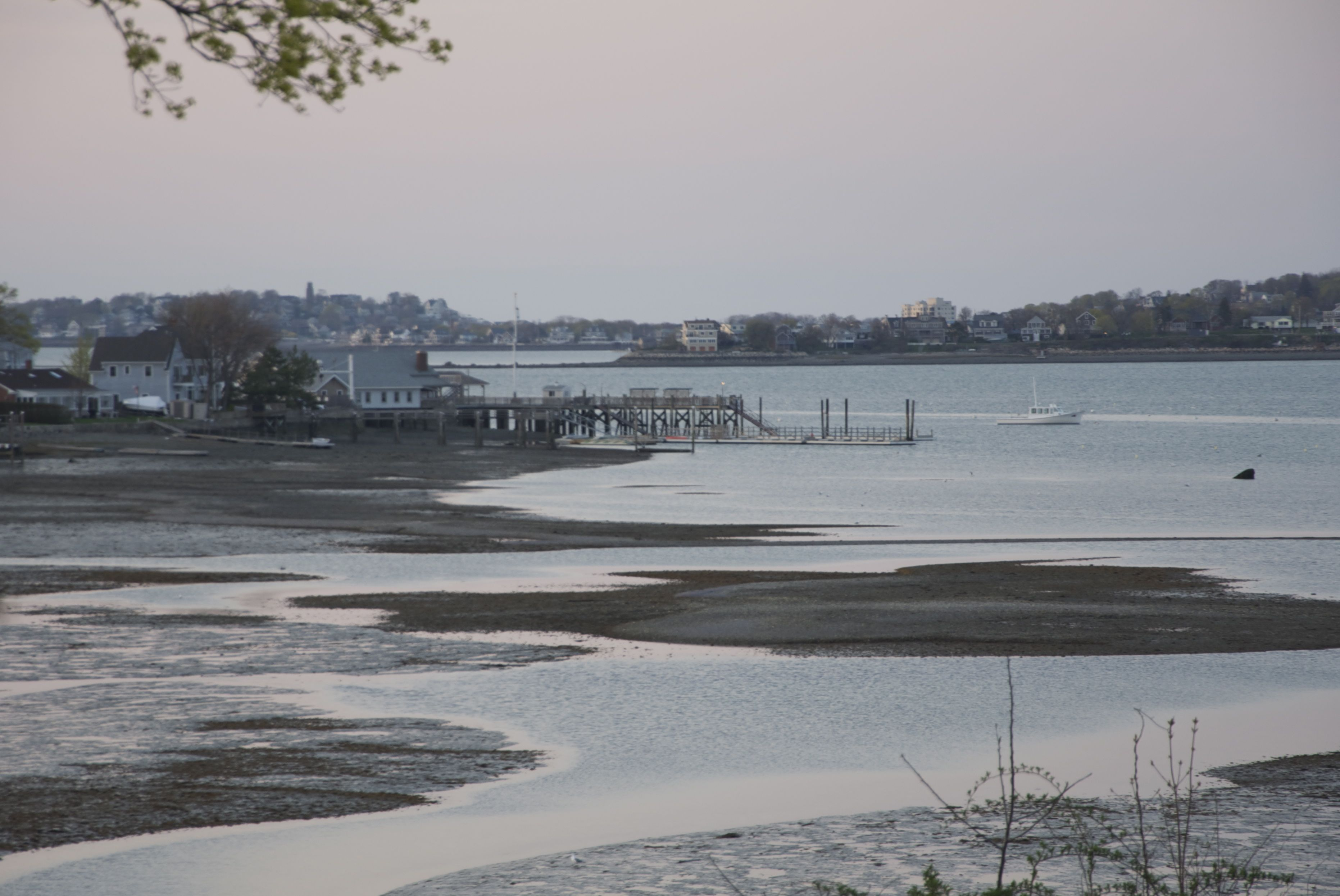 Lunar low tide boston harbor beaconboston harbor beacon once again it is the time of the month where the full moon is making the tides more extreme during this months full moon the low tide was approximately nvjuhfo Choice Image
