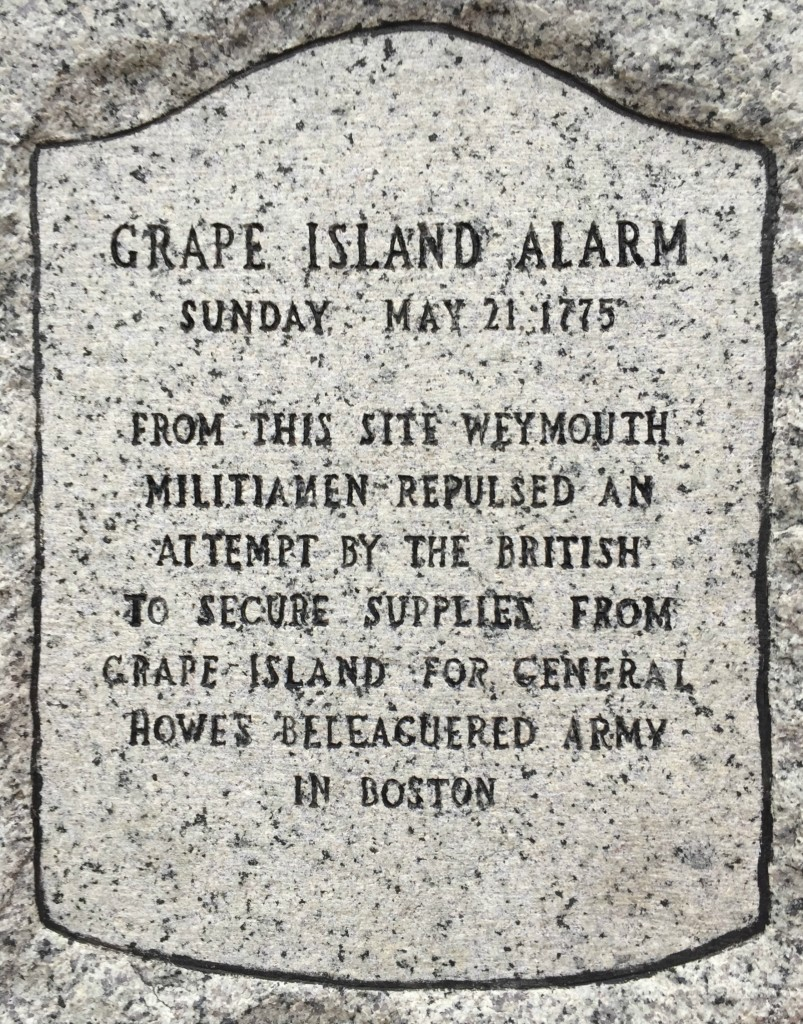 grape island alarm