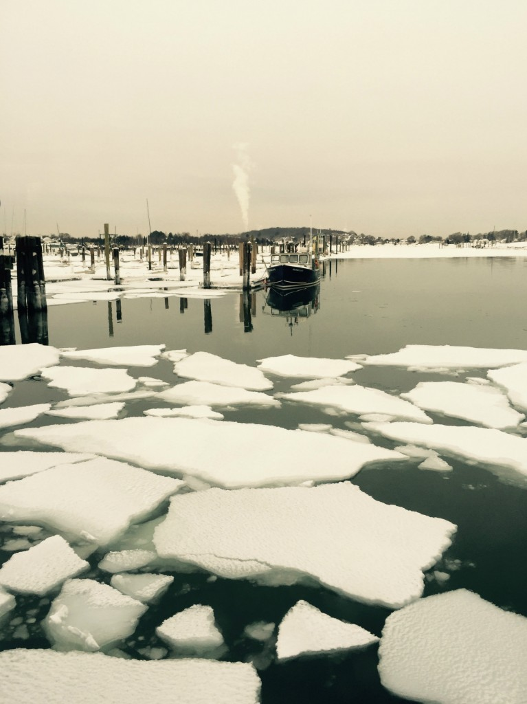 Hewitts cove ice